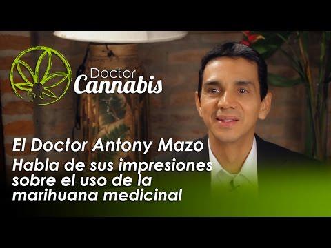 Cannabis Medicinal por el Dr. Anthony Mazo