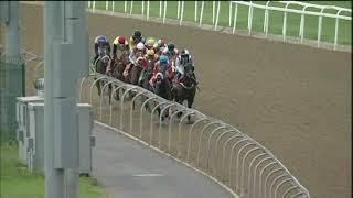 Vidéo de la course PMU PRIX WWW.TRACKANDBALL.CO.ZA FM 77 HANDICAP