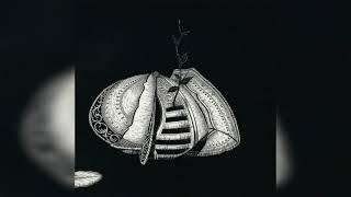 Alcest - Le Miroir (FLAC - 48 Bit/96 KHz) (HQ)