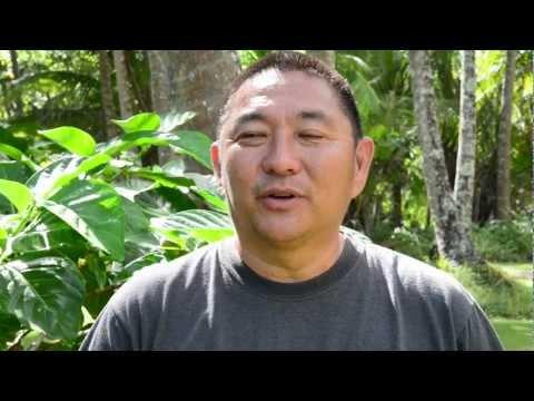 Organic Hawaiian Ola Energy Shot
