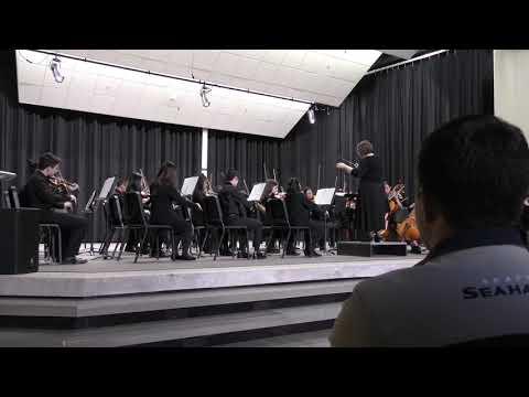 Orchestra Cookie Concert  Risdon Middle School 2019   Part 4