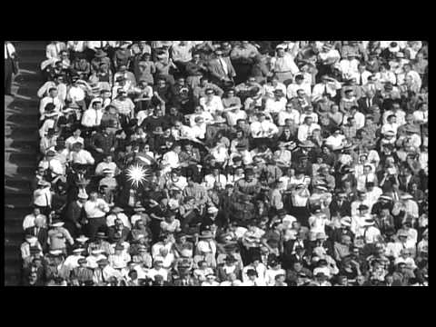 Army versus Rice University team in a college football game in Houston, Texas. HD Stock Footage