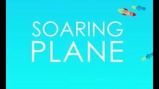 Soaring Jet