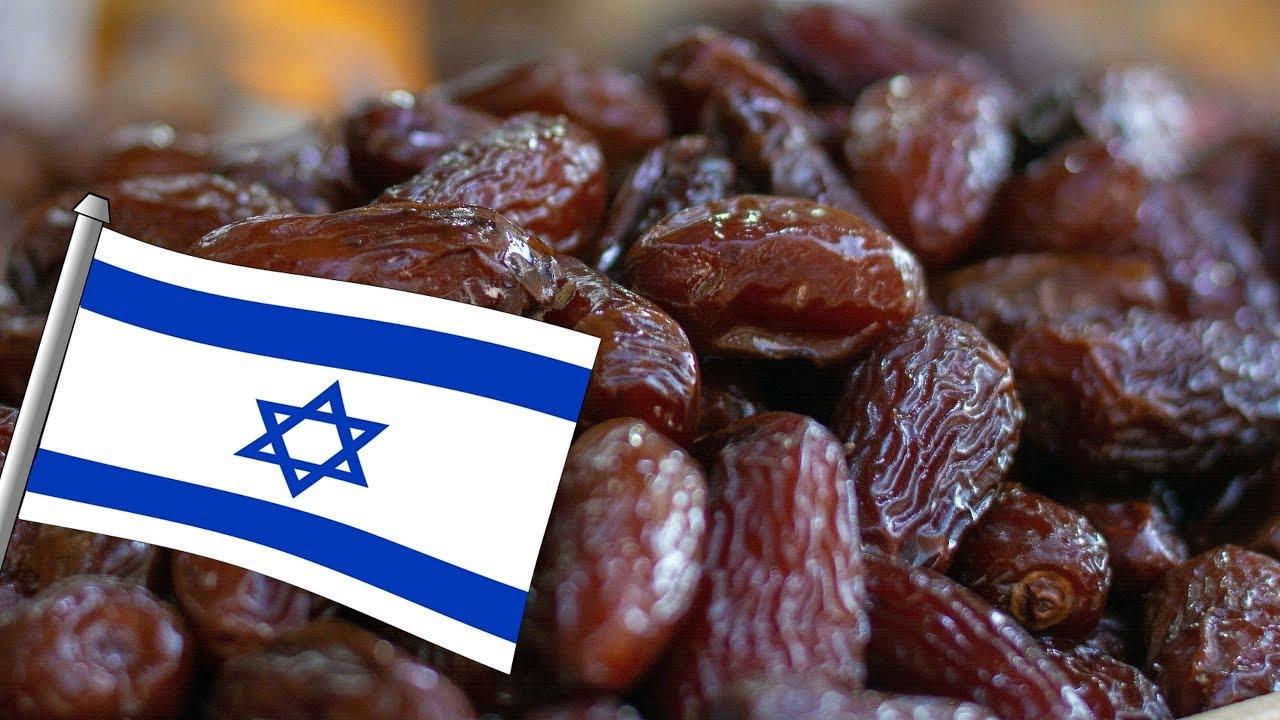 تعرف الى اسرائيل – كيف أصبحت إسرائيل دولة عظمى في مجال زراعة النخيل وانتاج التمور؟