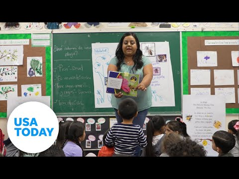 Are bilingual education programs the future? | USA TODAY