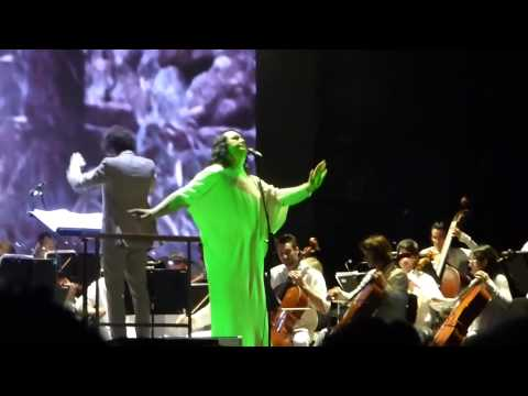 Antony and the Johnsons - 4 Degrees (Primavera Sound 2015)