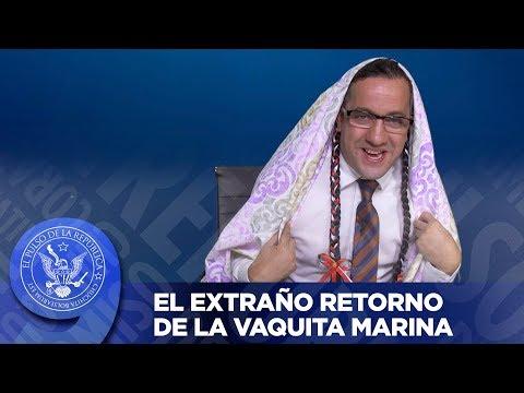 EL EXTRAÑO RETORNO DE LA VAQUITA MARINA - EL PULSO DE LA REPÚBLICA