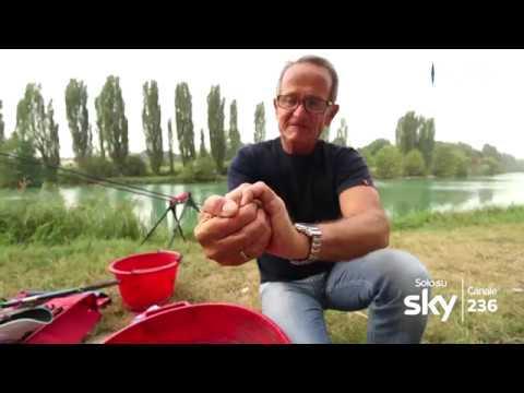 PESCA TV SKY 236 - A PESCA IN FIUME: SUL MINCIO A BOLOGNESE - pillola