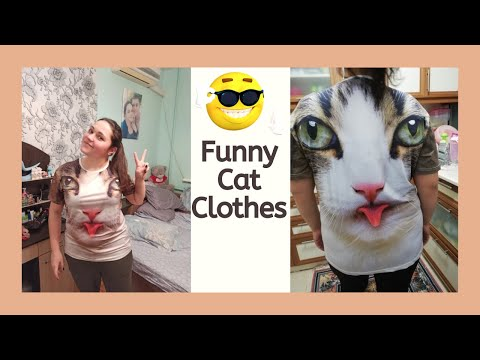 Funny Cat T Shirts | Exclusive 3d Print Tee Shirts With Cats