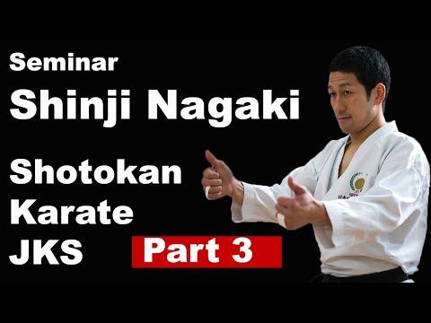 Seminar 55: Shinji Nagaki Shotokan Karate Part 3 KUMITE