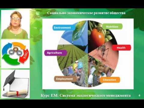 Курсовые Страница  Реферат экологический менеджмент