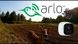 Arlo Go Security Camera video quality examples as a trail camera