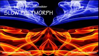 Thomas Fanger & Mario Schönwälder - SLOW POLYMORPH