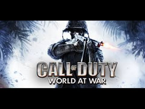 Call of Duty World at War Test