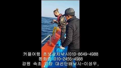 속초배낚시 체험낚시 강원도 양양 삼치낚시 수산항 낚시 포인트 낙산항 바다낚시 가격