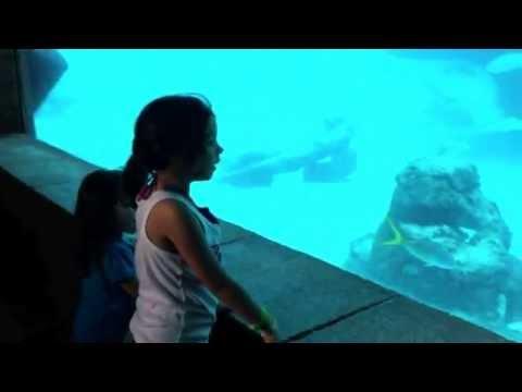 Port of Call: Nassau, Bahamas & Atlantis Resort Excursion