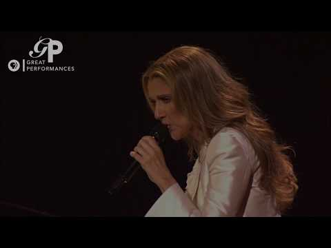 """Celine Dion Performs """"Because You Loved Me"""" With David Foster"""