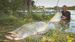 huge s catfish vs small spinning s rod hd by catfishing world