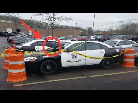 Police Saw A Dove Incubating Eggs On Their Patrol Car And Decided To Protect Her