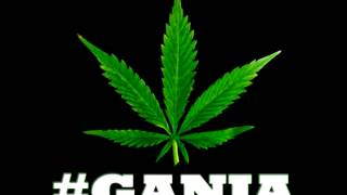 TUGGAWAR - FEATURING MR LEXX - HIGH GRADE GANJA - PROD BY @V_H_R_