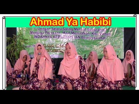Ahmad Ya Habibi, HABIBI SALAM ALAIKA - Hadroh Az-Zahra