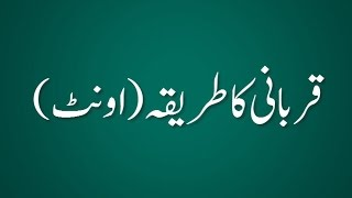 Qurbani Ka Tariqa (Camel) - Madani Guldasta 559 - Maulana Ilyas Qadri