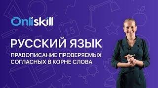 Русский язык 5 класс: Правописание проверяемых согласных в корне слова