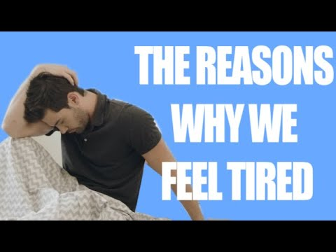 Why Am I So Tired? 10 Common Causes Of Tiredness.