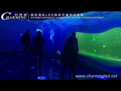 LED Dance Floor Project @ Tianjin Haichang Polar Ocean World