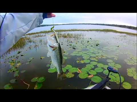 Lake Wales Lake Bass Fishing