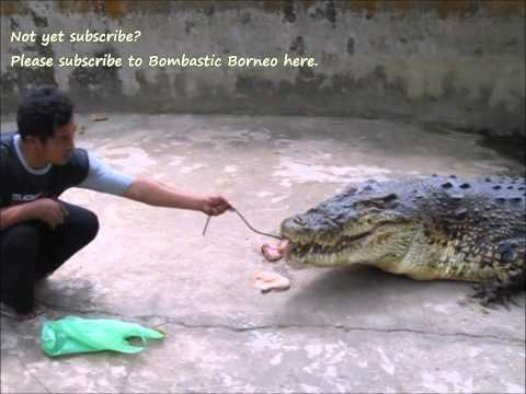 Taman Wisata Kum Kum Palangka Raya Kalimantan Tengah