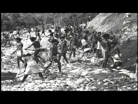 Construction of a road from Oro Bay to Dobodura, New Guinea by natives under supe...HD Stock Footage