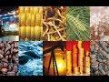 L'Afrique et les matières premières