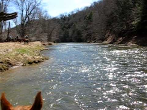 PA Trail Ride - In the Creek