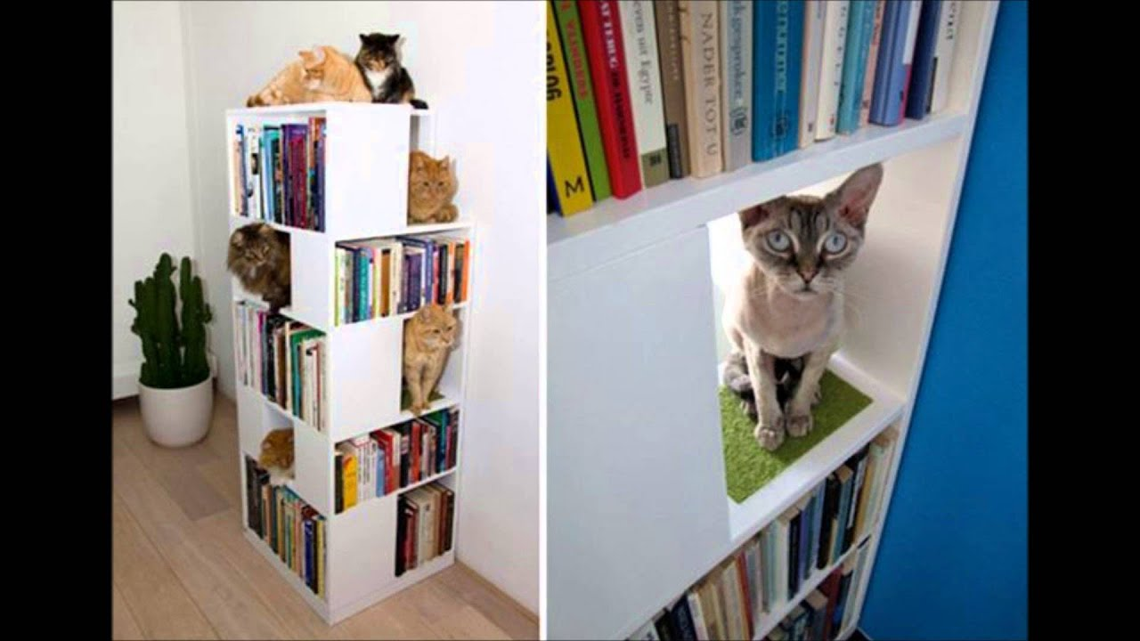 Space Saving, Creative And Innovative DIY Furniture For Cats And Dogs Lover    YouTube