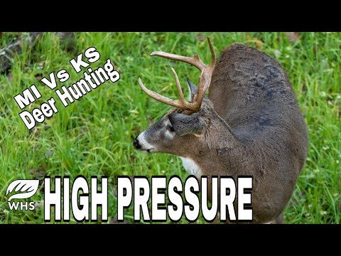 10 High Pressure Deer Hunting Strategies