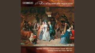 Schwingt freudig euch empor, BWV 36c: Aria: Der Tag, der dich vordem gebar (Bass)