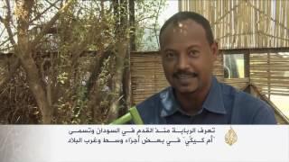الطنبور السوداني.. عزف على أوتار تراث يأبى الاندثار