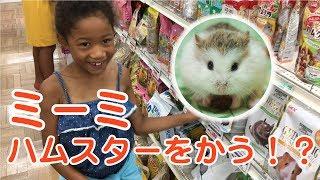 ハムスター(ジャンガリアン)を飼う!ホームセンターでエサ・トイレ・飼育方法を学ぶLittle Girl MImi goes shopping to gets  Djungarian Hamsters? thumbnail