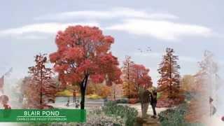 Park Pod Promo: Four Seasons Garden, Blair Pond Bridge And Blair Pond