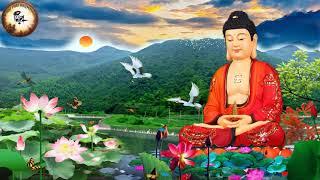 1- 8 Âm Lịch Nghe Tụng Kinh Phật Thuyết Đại Thừa Vô Lượng Thọ Trang Nghiêm Thanh Tịnh Bình Đẳng Giác