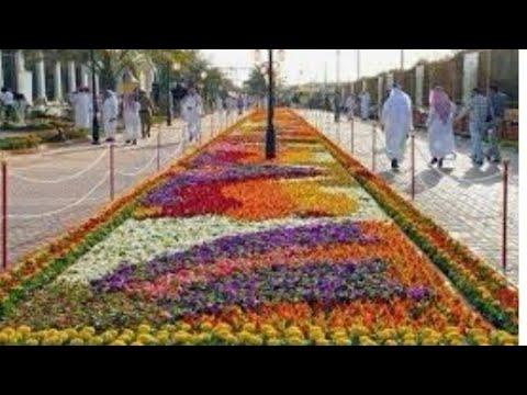 مرحبا بكم بحديقة الزهور بالرياض التخصصي Youtube