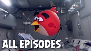 Angry Birds Zero Gravity | All Episodes