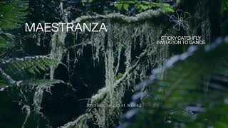 "Fleet Foxes - ""Maestranza"" (Lyric Video)"