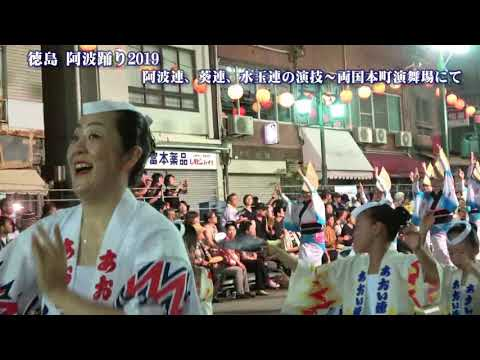 徳島 阿波踊り2019 阿波連、葵連、水玉連の演技