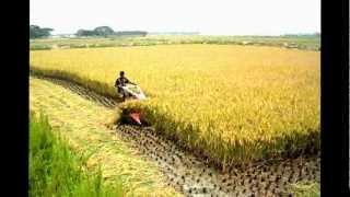 Agricultural Instrument Bangladesh