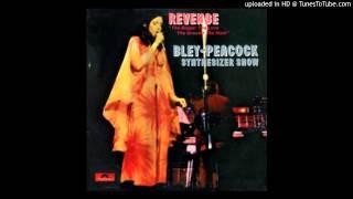 Bley-Peacock Synthesizer Show - Mr. Joy