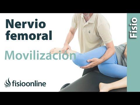 Automovilizaciones del nervio femoral para dolores en el muslo