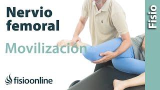 Del nhsd femoral disfunción nervio