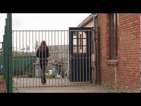 Undercover in Nederland; Aflevering 100
